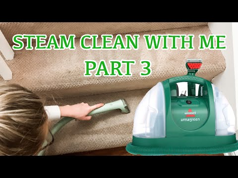 CLEANING MOTIVATION   BISSELL LITTLE GREEN MACHINE PROHEAT REVIEW
