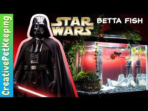 Star Wars: 5 Gallon Betta Fish Tank Setup   The Last Jedi Theme