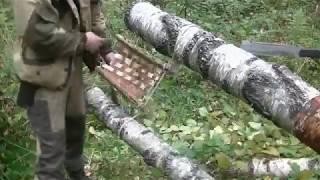 ПРОСТОЙ ПРИЁМ ПЛЕТЕНИЯ из БЕРЕСТЫ - Лесные Приблуды, Ловушки и т. д.