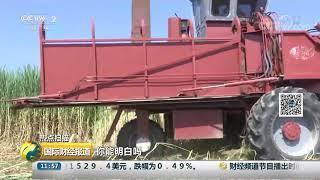 [国际财经报道]热点扫描 美国挑起并升级经贸摩擦 美农场主抱怨日子难过| CCTV财经