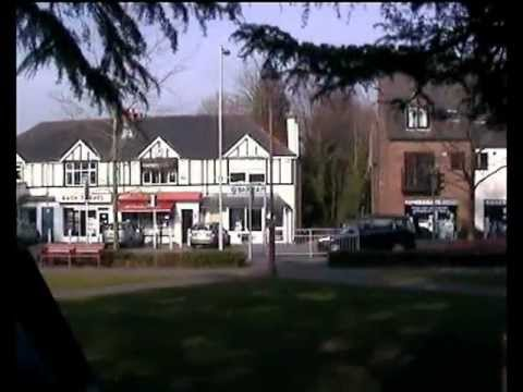 Verwood Dorset Uk Ferrets Green In The Centre Of The Village In Early March 2013