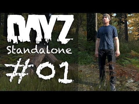 how to play dayz without arma 2