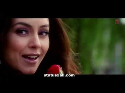 Pehle Kabhi Na Mera Haal|Romantic Whatsapp status song| Baghban | Salman Khan, Mahima Chaudhary