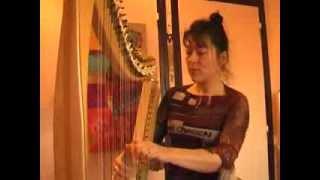 magali zsigmond harpe electrique