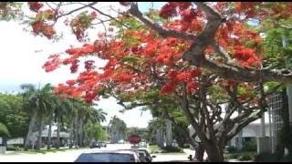 дешевые дома во флориде