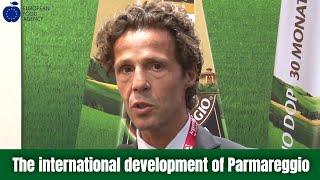 The international development of Parmareggio