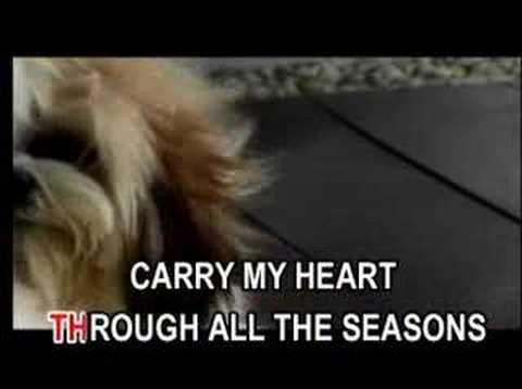 Carry my love
