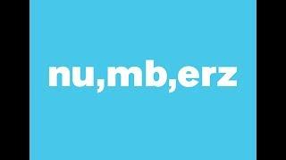 numberz Client Portal