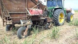Green Cane Planting Burdekin Qld through Trash
