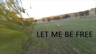 let me be free-zippy 285