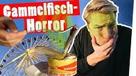 Surströmming-Bestrafung: Iss den ekligsten Fisch der Welt! II Das schaffst du nie!