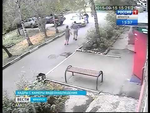 Как в России картошку воруют: видео скрытой камеры, Вести-Иркутск