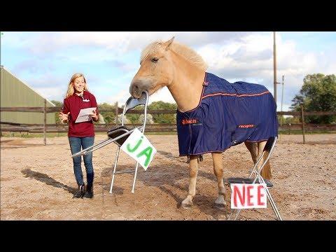 WIL MOOS EEN MENS ZIJN? | Paard beantwoordt vragen #03