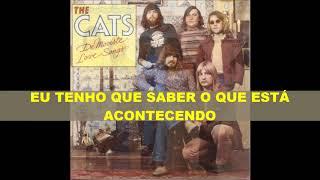 "Gambar cover THE CATS  "" I GOTTA KNOW WHAT'S GOING ON ""  (tradução)"