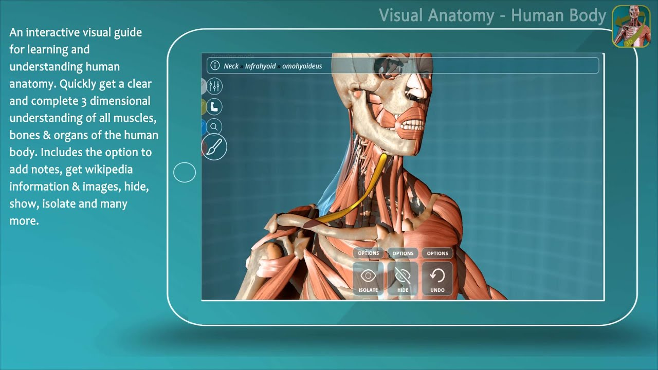 Visual Anatomy - Human Anatomy (app) - YouTube