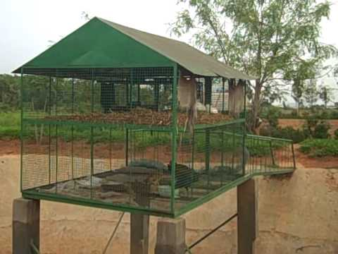 ansfordparkcottage co as well 367043438365927973 further Watch additionally  further Rainwater Harvesting. on rainwater harvesting