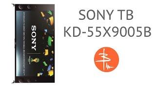 ТЕЛЕДИДАР Sony KD-55X9005B - обзор телевизора 4-қосымшаға