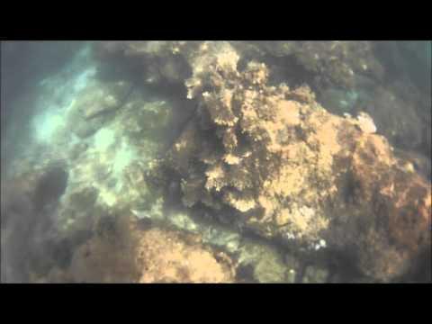 Brunei: Snorkeling Pelong Rocks
