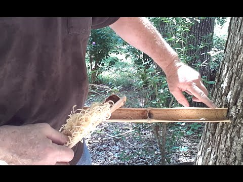 Friction Fire 4 Ways... Fire Roll, Hand Drill, Bow Drill, and Bamboo Fire Saw