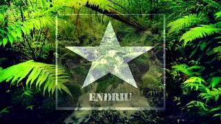 Alvaro & Mercer Feat. lil jon -welcome to the jungle bitch (DJ ENDRIU BOOTLEG)