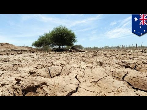 Adverse El Niño events expected to double in frequency