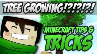 How To Grow Large Trees In Mincraft  1.5 - Minecraft Tips & Tricks