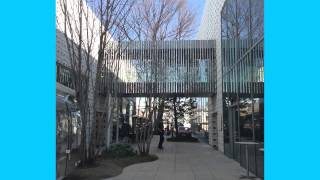 Tokyo Architecture 2013