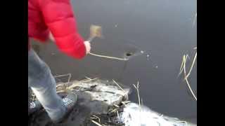 видео Водоворот в море озере как выбраться