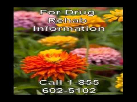 drug recovery omaha