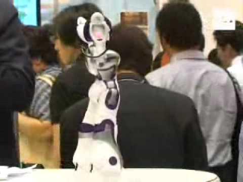 Ema la novia robot juguete de moda entre los adultos - Jugueteria para adultos ...
