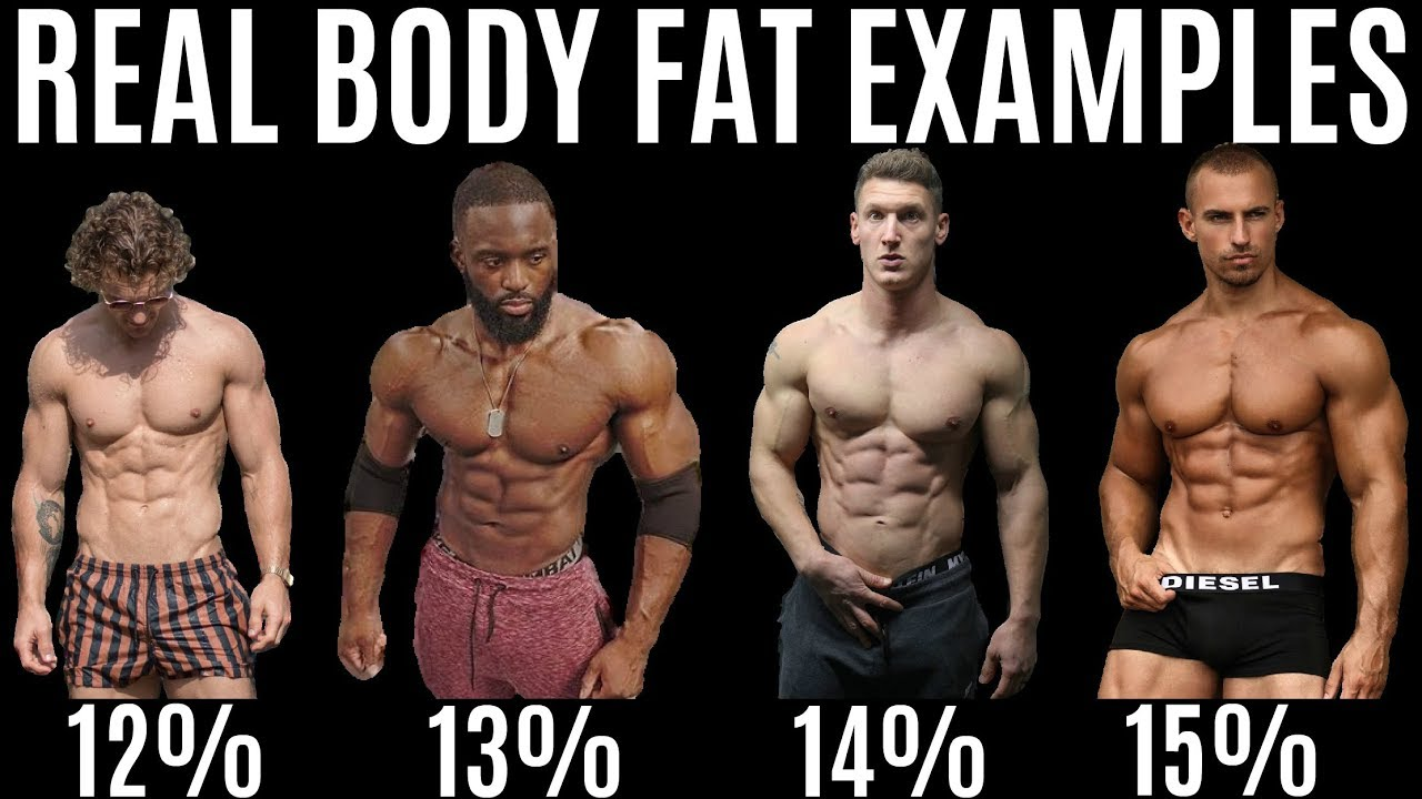 body fat percentage photo examples