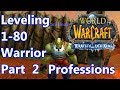 WoW - WoTLK 3.3.5 - Warrior Leveling 1-80 Part 2 - What Professions
