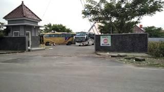 Telolet bus LISA TRANS SHD