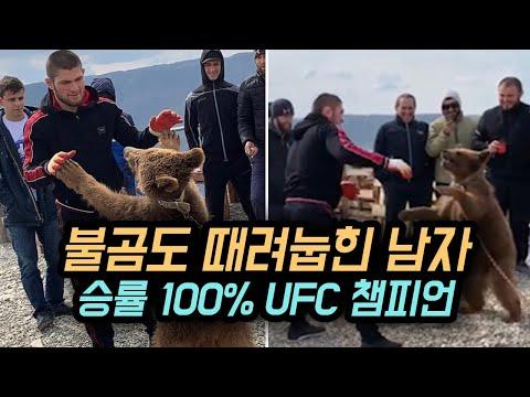 불곰도 때려 눕혔다 !!? 승률 100%의 UFC 최강 파이터 ㄷㄷ