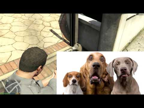 GTA V: Dog's don't die with Stun Gun