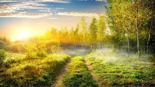 Beautiful Instrumental Hymns of Praise and Worship to God | Relaxing, Soothing, Peaceful