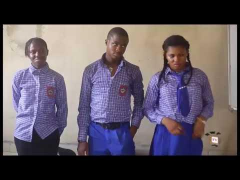 Wise Fool Season 4 - 2017 Latest Nigerian Nollywood Movie