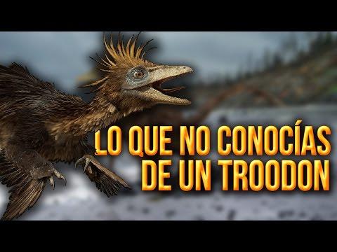 Lo que no conocías de un Troodon