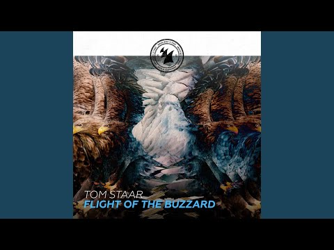 Flight Of The Buzzard (Extended Mix)