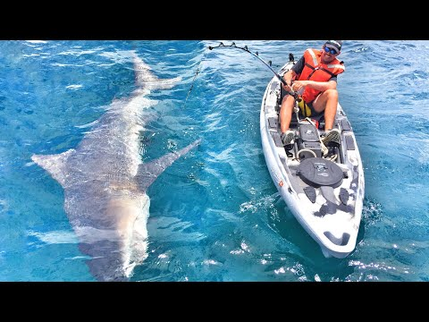 Massive Shark Fishing Crazy Tiny Boat!!! Weird Fish Catch Must See In Kayak ft BlacktipH