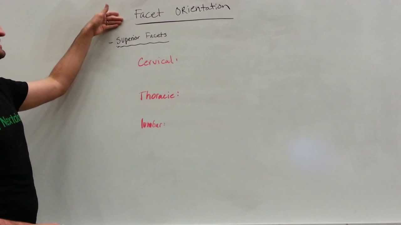 Facet Orientation Cervical Thoracic And Lumbar Spine Youtube