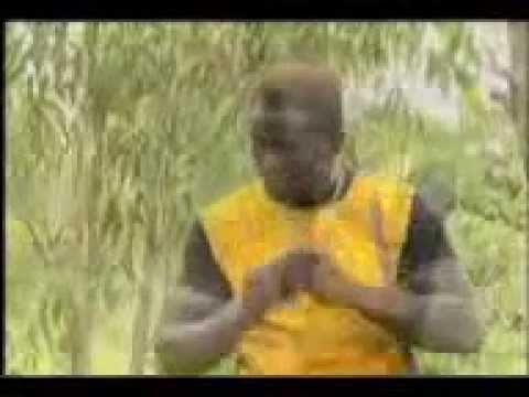 DEADLY FIGHT IN AN AFRICAN JUNGLE - TERROR GROUP