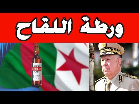 لقاحكورونا في الجزائر، النظام لا شغل له إلا المغرب ونسي مصالح شعبه. Algerie Maroc