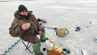 Зимняя рыбалка на Можайском водохранилище д Красновидово 17 03 21