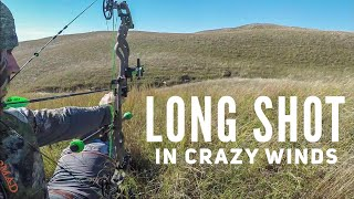 Long Shot in Crazy Winds Mule Deer Bowhunting | Bowmar Bowhunting |