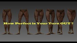 Ballet Turn Out Stretches Exercise Ballet Turnout Program Routine