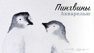 АБСОЛЮТНЫЕ милахи! Влюбленные пингвины за 2 минутки!