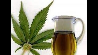 CBD Hemp (Cannabis) Oil Benefits and Uses
