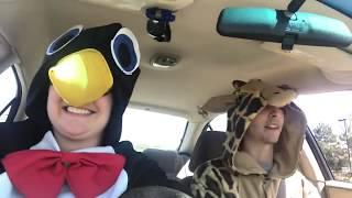 Animal Encounter Parody (featuring Funny Talking Animals - BBC One)