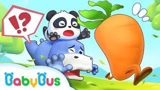 Baby Panda Chases after Running Carrot | Baby Panda's Magic Bow Tie | BabyBus Cartoon
